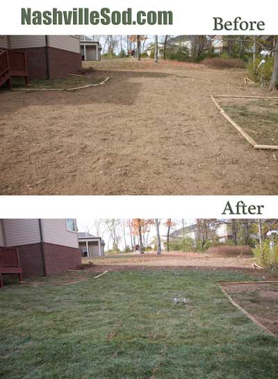 Nashville Sod before and after of a sodding project showing bare soil prepared for sodding and after with fresh green sod.